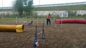 В Ростове прошли Всероссийские соревнования по кинологическому спорту: фоторепортаж