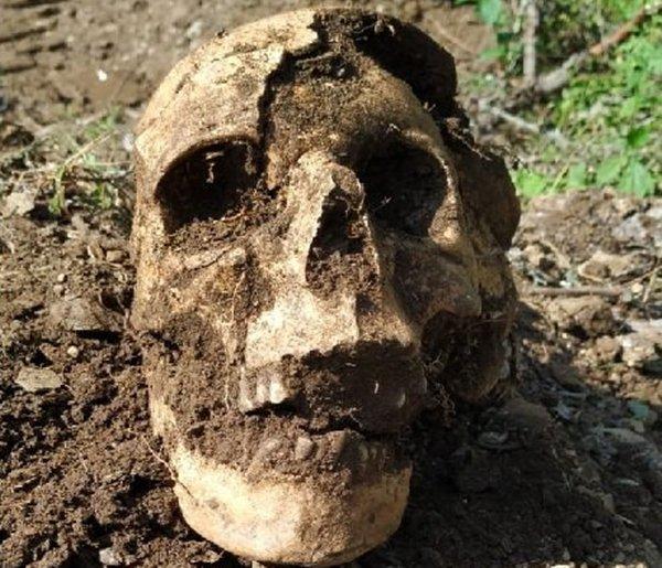 При раскопках в Ростовской области нашли останки солдата времен ВОВ