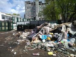«Дожили»: Власти Финляндии могут помочь убрать мусор в Самарской области