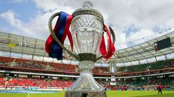 Через два дня на обозрение самарцев будет выставлен Кубок России по футболу