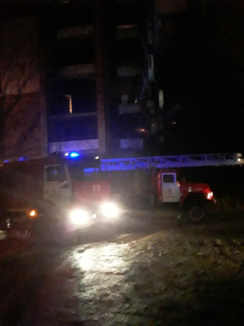 И шашлычок под коньячок: в Самаре два приятеля расслабились и устроили пожар