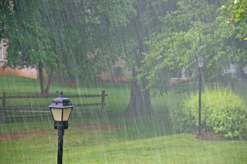 В первую неделю лета на Дону ожидаются понижение температуры и ливни