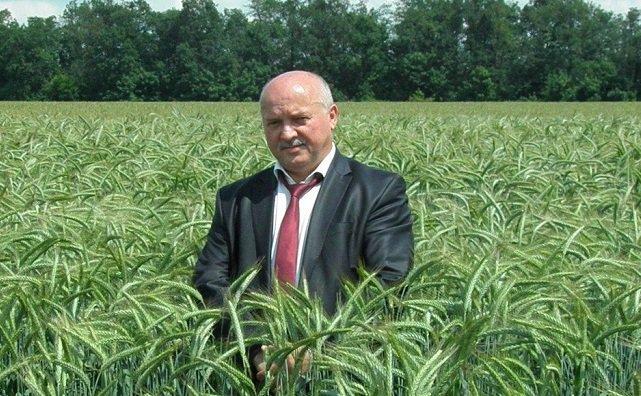Обвиняемый в получении взятки экс-руководитель «Госсорткомиссии» по Ростовской области пытался изменить меру пресечения